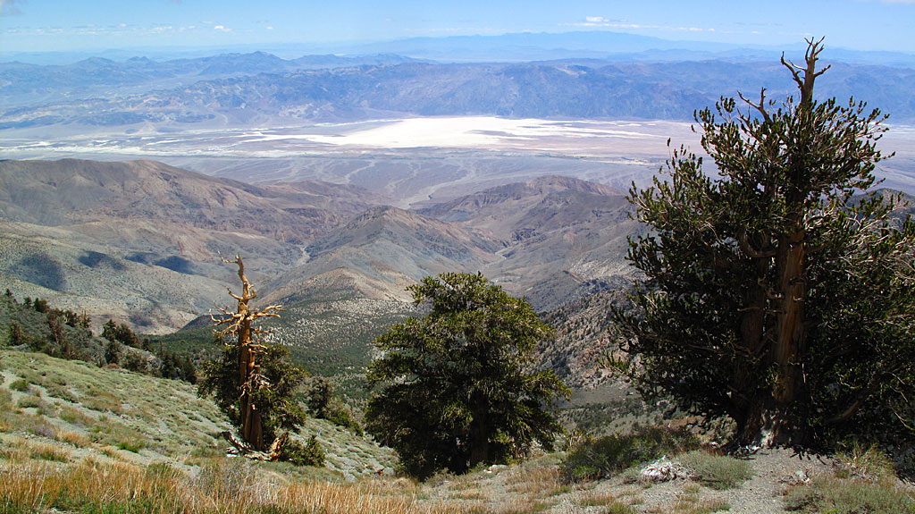 Badwater Basin, the lowest spot in Death Valley and the Western Hemisphere (-282'), seen from near the top of Telescope.