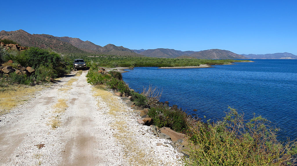 Driving along the Sea of Cortez - lush mangroves in the background.