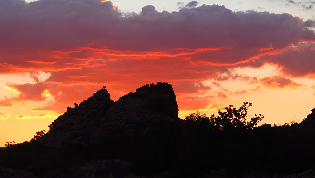 Friday night sunset. Did somebody say Lion King?