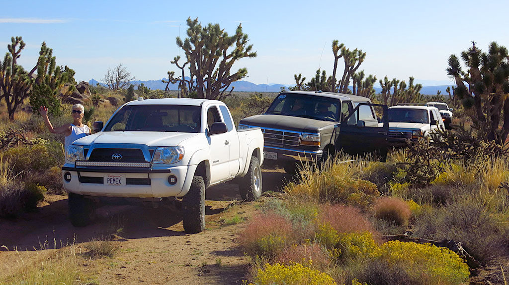 Stopping for photos in an area of thick, happy desert.