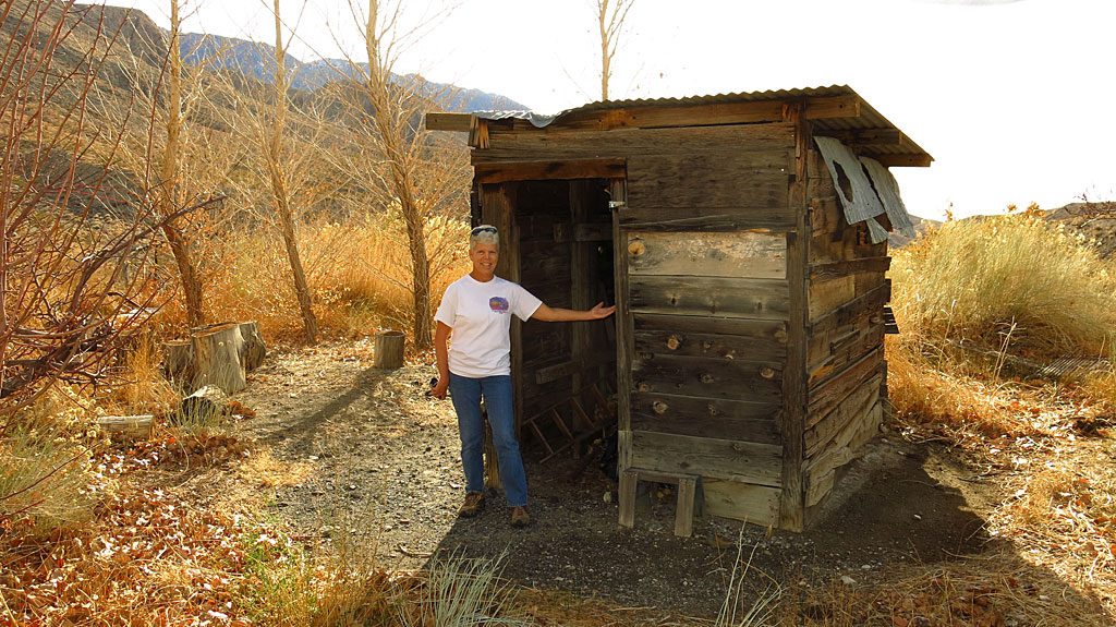 Our first stop up the canyon was at the Diggin's, a semi-active mining claim with some left-over infrastructure. Water flowed from the locked-up mine, running past grape arbors and cottonwood trees. And that there is the Slim Princess.