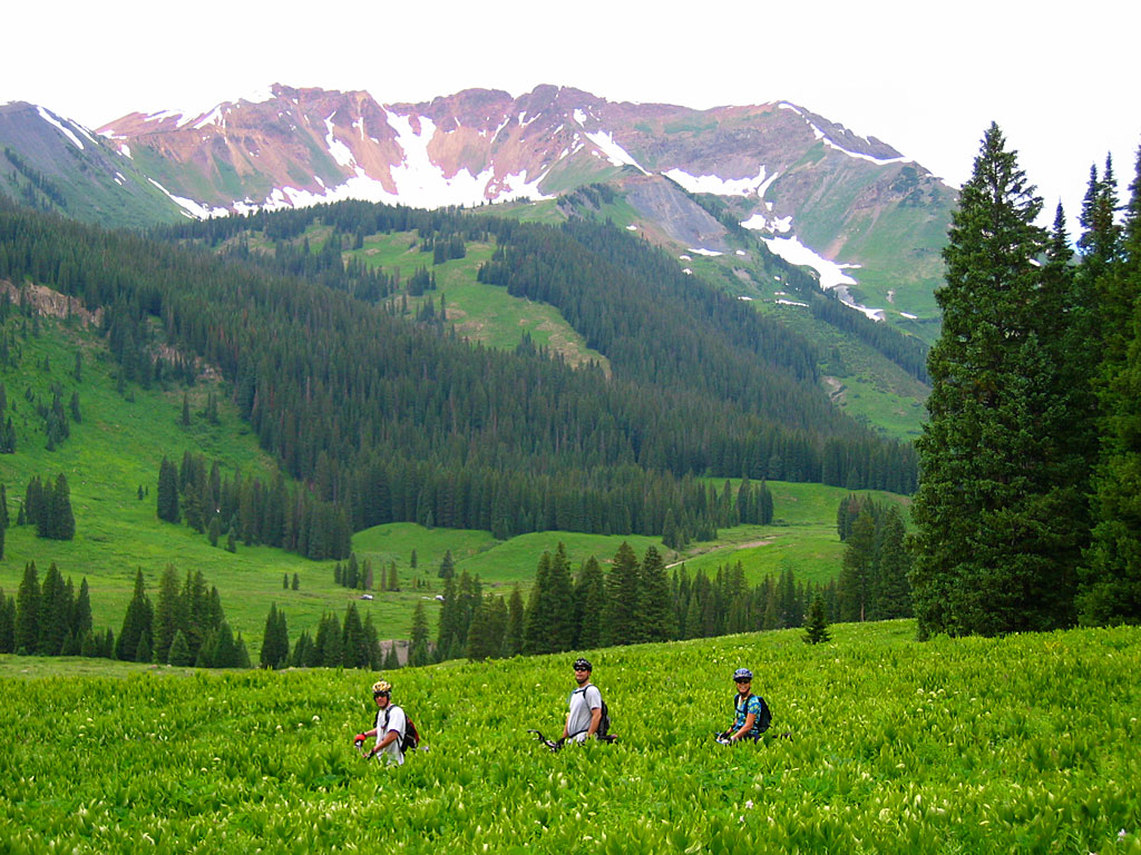 For the most part, the 401 is buff singletrack - the downhill is fun and fast. The bottom of the trail is around 9,000' elevation, and the top is close to timberline at 11,000'. Skeeny air for our sea-level lungs.