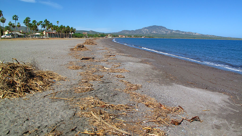 About three weeks prior to our arrival in Loreto, the area got hit hard by hurricane Paul. The surrounding desert was Kauai-like green, and there was flood debris along the beach.