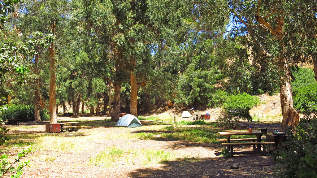 Santa Cruz has campgrounds providing water, a table and bear lockers - not to worry, there are no bears on the island. Charcoal and campfires are not allowed, and there is not trash service. You pack it in, you pack it out.
