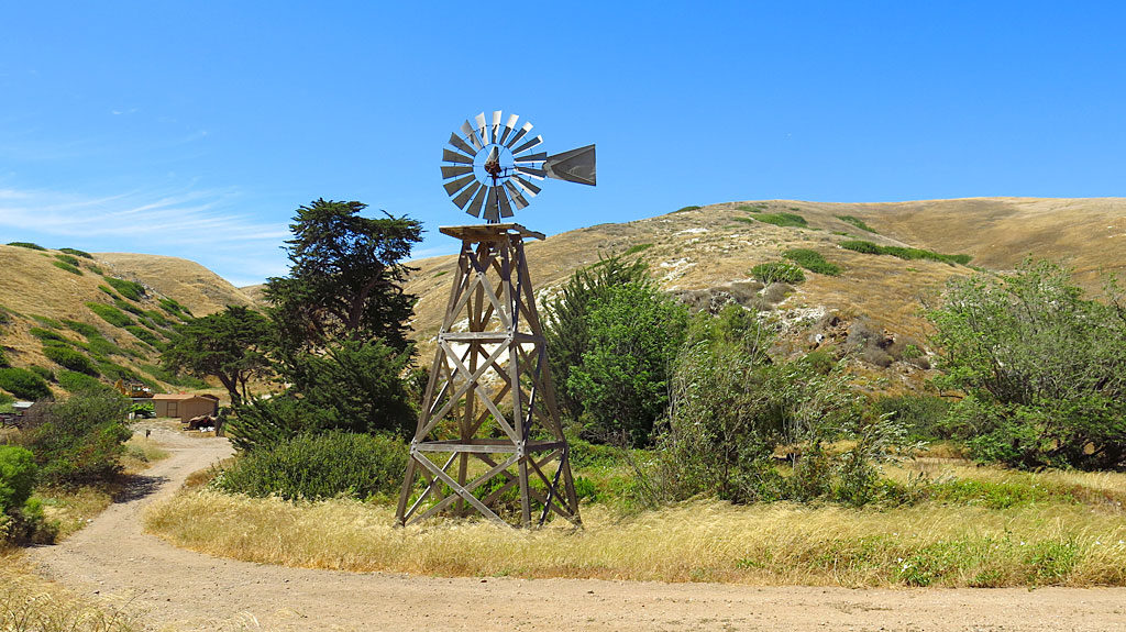 The windmill is part of the remaining infrastructure of the Scorpion Ranch -- an old sheep ranch until 1984. Today, the ranch's main building is a National Park Visitor Center.