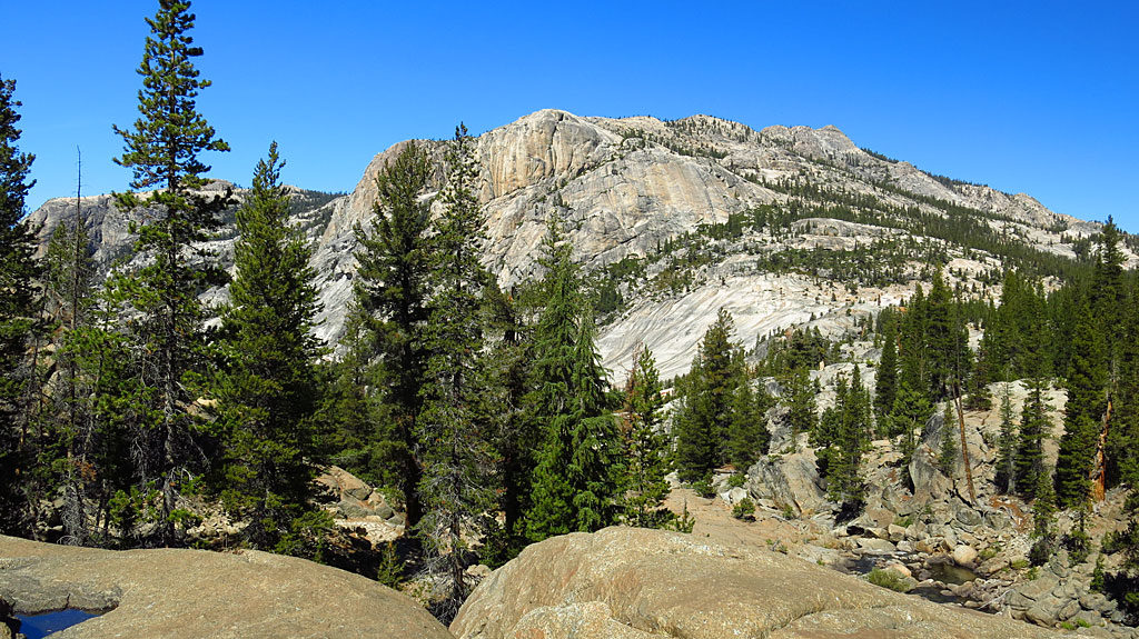 Massive expanses of granite define Yosemite.