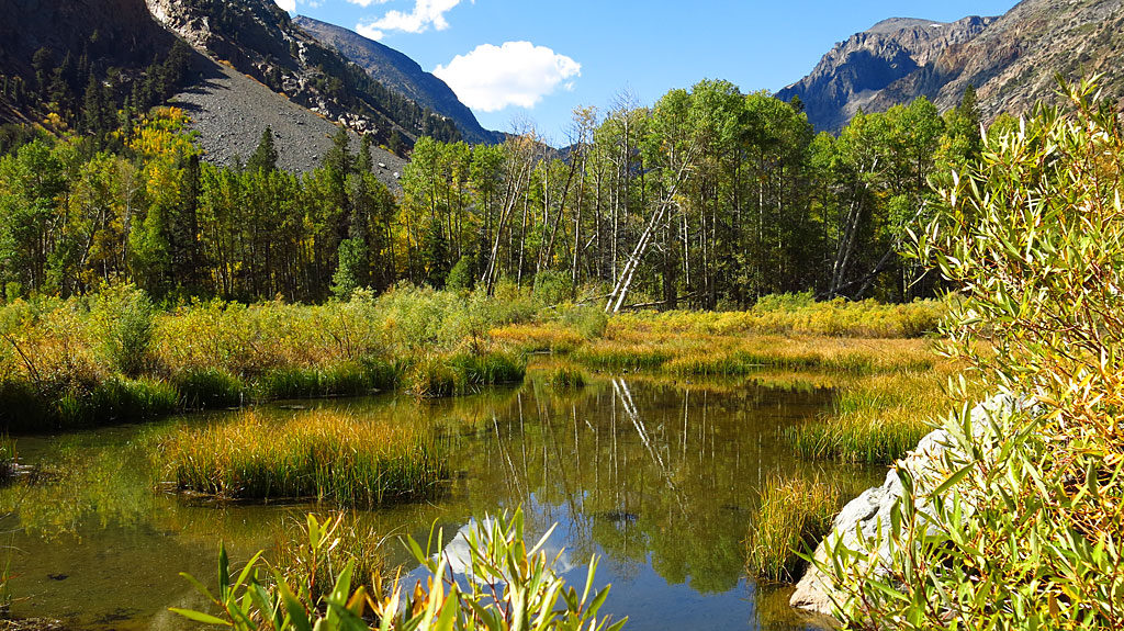 A beaver-dammed lake on Mill Creek. At only 8,000', trees were only beginning to change color.