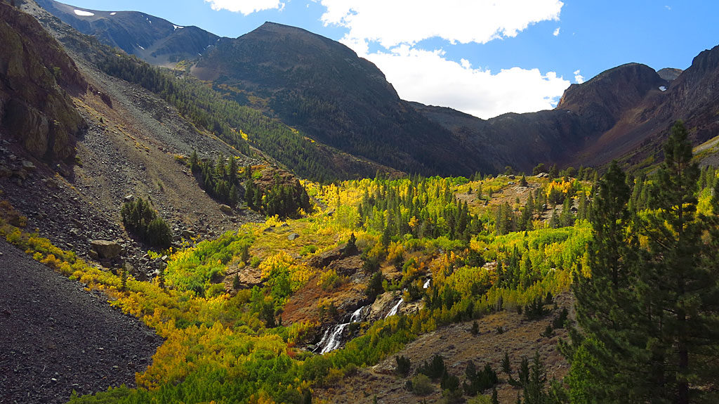 Fall color-overload approaching the top end of Lundy Canyon.