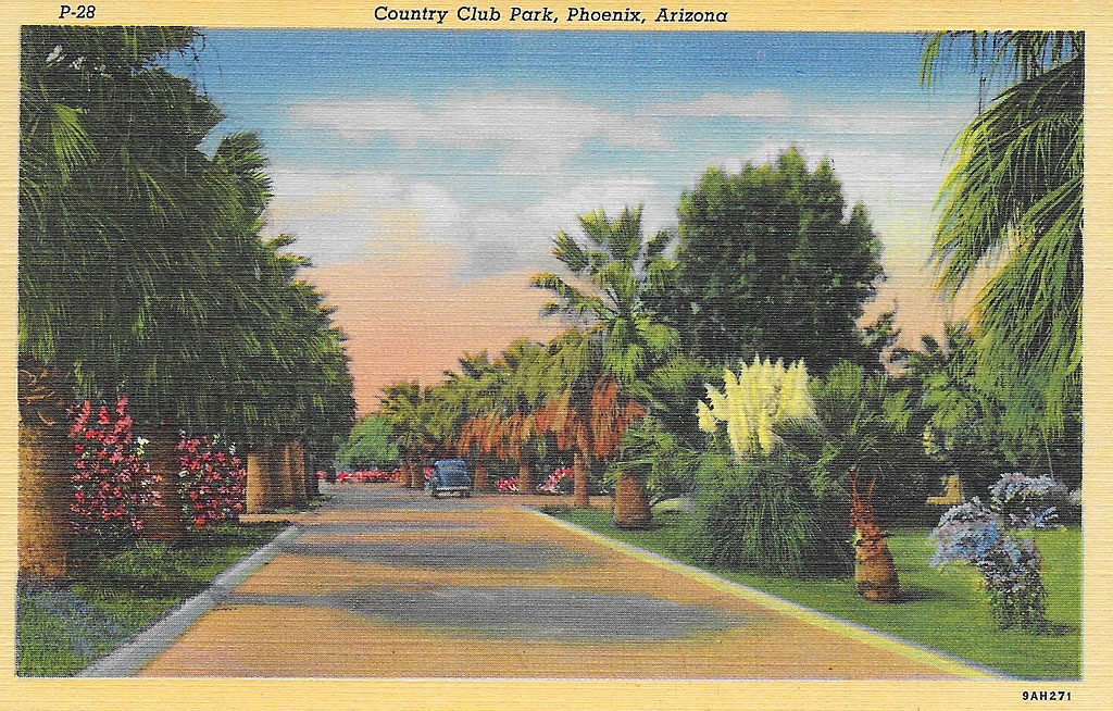 On front: Country Club Park, Phoenix, Arizona.