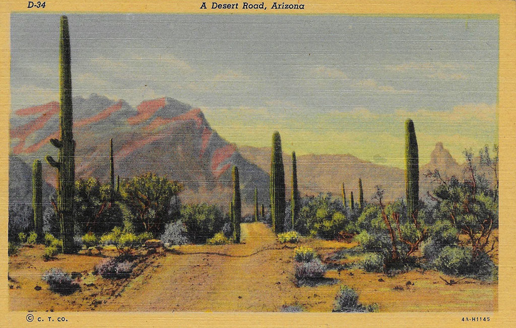 On front: A desert road, Arizona.