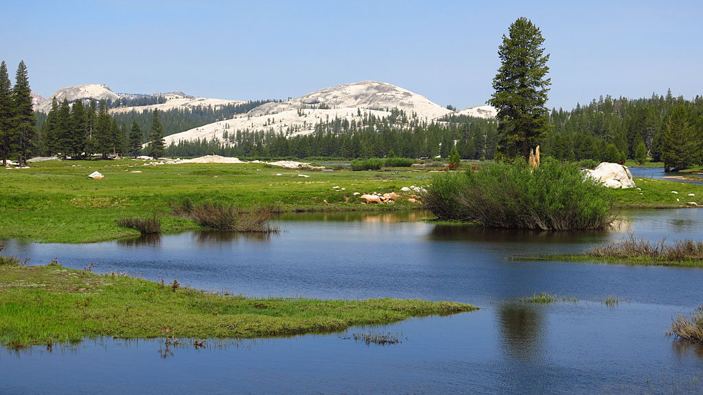 The Tuolumne River flows through Tuolumne Meadows in eastern Yosemite. Much of the meadow is flooded.