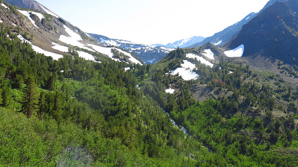 The waterfall is the outflow from Laurel Lakes, located on the other side of the smaller, closer saddle. The snowy road can be seen along the left, tree-free (but not snow-free) slope.